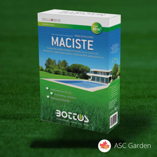 Seme trave za sunce_Maciste