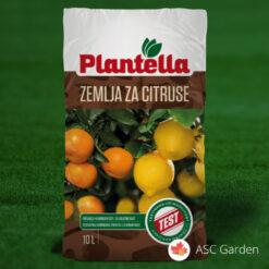Zemlja za citruse 10L